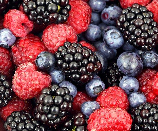 owoców leśnych